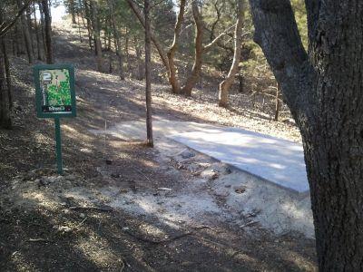 Warner Park, Main course, Hole 2 Tee pad