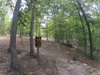 The Timberdoodle Thicket, Main course, Hole 16 Tee pad