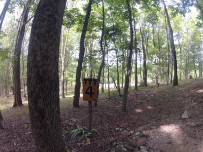 The Timberdoodle Thicket, Main course, Hole 4 Tee pad