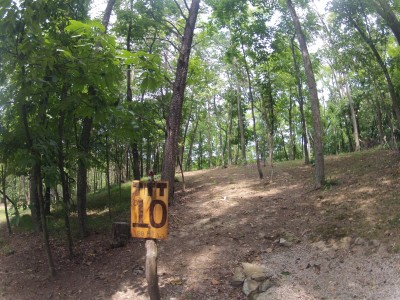 The Timberdoodle Thicket, Main course, Hole 10 Tee pad
