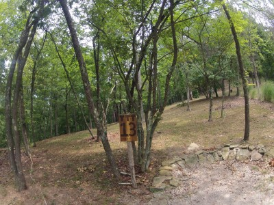 The Timberdoodle Thicket, Main course, Hole 13 Tee pad