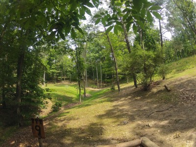 The Timberdoodle Thicket, Main course, Hole 9 Tee pad