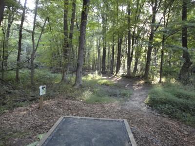 Unami Creek Park, Main course, Hole 4 Tee pad