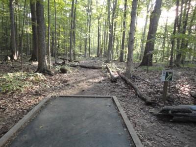 Unami Creek Park, Main course, Hole 5 Tee pad