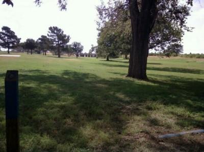 McKinney Park, Main course, Hole 8 Tee pad