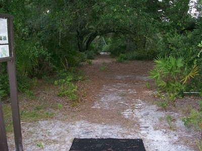 University of Central Florida, Main course, Hole 4 Tee pad