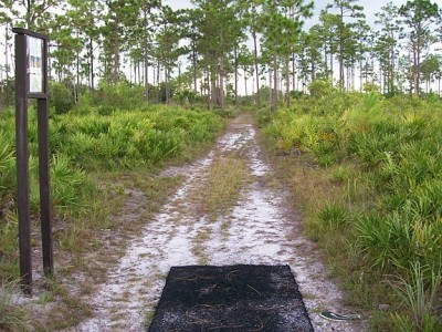 University of Central Florida, Main course, Hole 3 Tee pad
