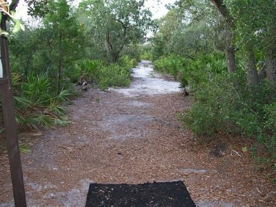University of Central Florida, Main course, Hole 5 Tee pad