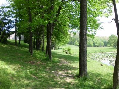 Wingfoot Lake State Park, Main course, Hole 6 Short tee pad