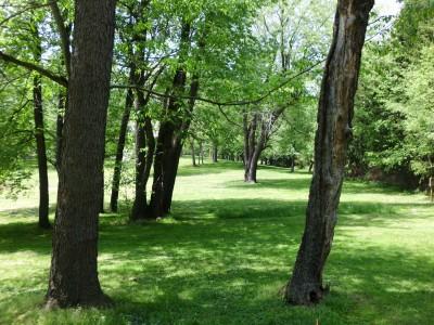 Wingfoot Lake State Park, Main course, Hole 16 Long tee pad