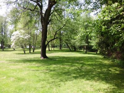 Wingfoot Lake State Park, Main course, Hole 16 Short tee pad