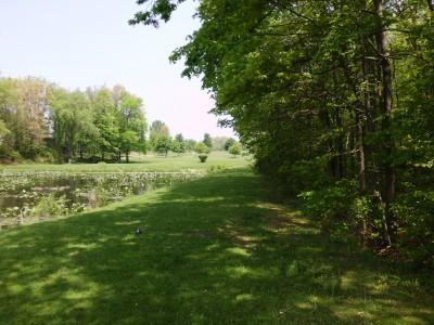 Wingfoot Lake State Park, Main course, Hole 7 Long tee pad