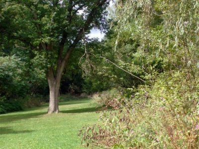Cedarvale Park, Main course, Hole 7 Long approach