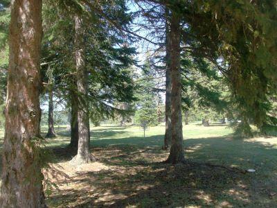 Birch Point Park, Main course, Hole 17 Short approach