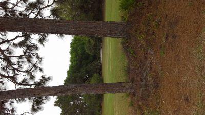 Pinebrook Park, Main course, Hole 1 Tee pad