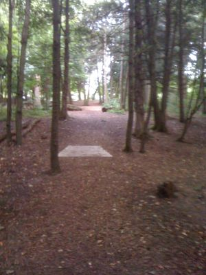 Lower Cato Falls County Park, Main course, Hole 15 Long tee pad