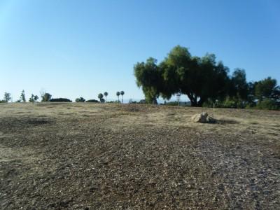 Thousand Oaks Community Center, Rabbit Flats, Hole 3 Tee pad