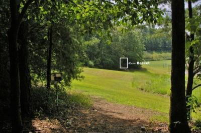 Civitan Park, Greg Carter Course, Hole 12 Short tee pad