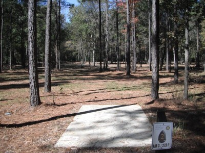 Indian Creek, Main course, Hole 2 Tee pad