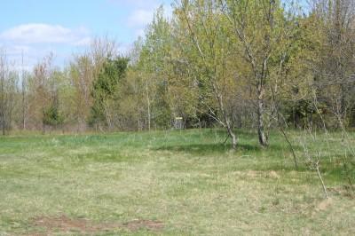Cadyville Recreation Park, Cadyville DGC, Hole 7 Midrange approach