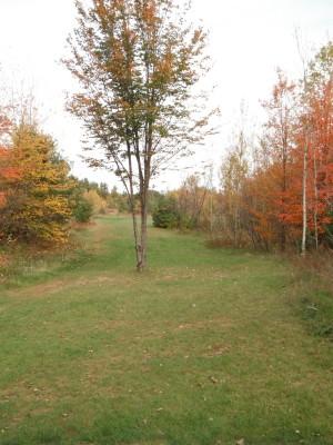 Cadyville Recreation Park, Cadyville DGC, Hole 7 Long approach