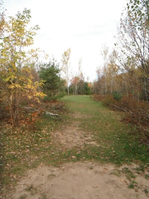 Cadyville Recreation Park, Cadyville DGC, Hole 6 Long approach