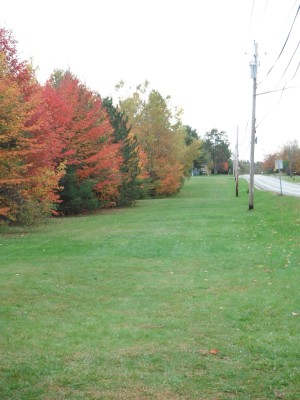 Cadyville Recreation Park, Cadyville DGC, Hole 17 Long approach