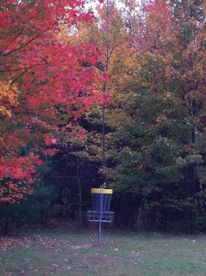 Cadyville Recreation Park, Cadyville DGC, Hole 17 Midrange approach