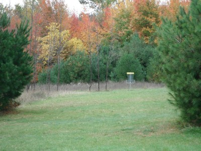 Cadyville Recreation Park, Cadyville DGC, Hole 15 Midrange approach