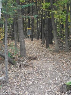 Cadyville Recreation Park, Cadyville DGC, Hole 8 Midrange approach