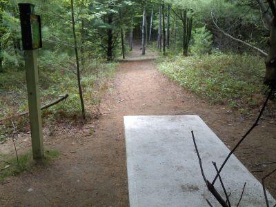 Cadyville Recreation Park, Cadyville DGC, Hole 8 Tee pad