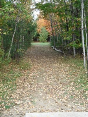 Cadyville Recreation Park, Cadyville DGC, Hole 3 Long approach