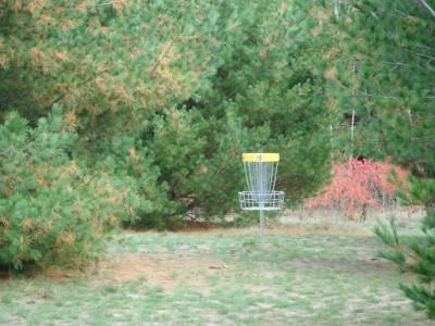 Cadyville Recreation Park, Cadyville DGC, Hole 10 Putt