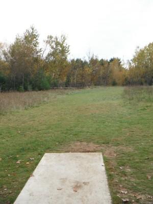 Cadyville Recreation Park, Cadyville DGC, Hole 2 Long approach