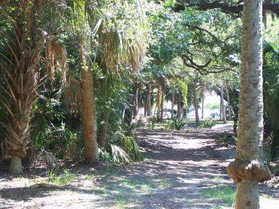 Maximo Park, Main course, Hole 5 Long tee pad