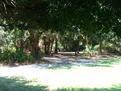 Maximo Park, Main course, Hole 12 Long tee pad