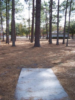 Ronnie Van Zant Memorial Park, Main course, Hole 14 Tee pad