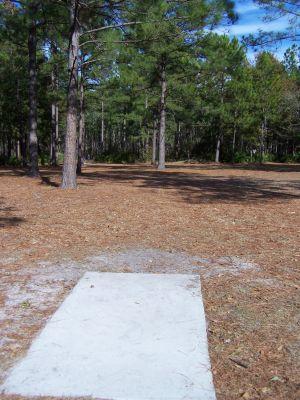 Ronnie Van Zant Memorial Park, Main course, Hole 11 Tee pad