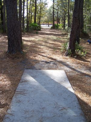 Ronnie Van Zant Memorial Park, Main course, Hole 7 Tee pad