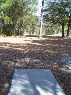 Ronnie Van Zant Memorial Park, Main course, Hole 6 Tee pad