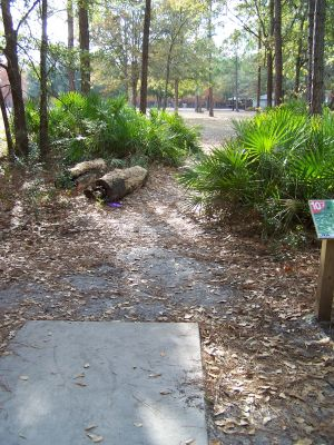 Ronnie Van Zant Memorial Park, Main course, Hole 10 Tee pad