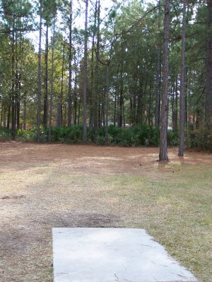 Ronnie Van Zant Memorial Park, Main course, Hole 13 Tee pad