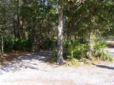 Ronnie Van Zant Memorial Park, Main course, Hole 5 Short approach
