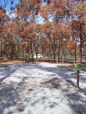 Ronnie Van Zant Memorial Park, Main course, Hole 18 Tee pad