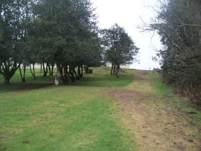 Lower Columbia DGC, Main course, Hole 2 Short tee pad