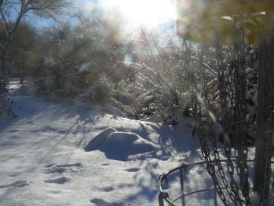 Rock Creek, Winter course, Hole 7