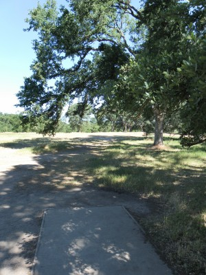 Rocklin Disc Golf Course, Main course, Hole 13 Tee pad