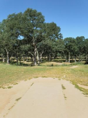 Rocklin Disc Golf Course, Main course, Hole 10 Tee pad