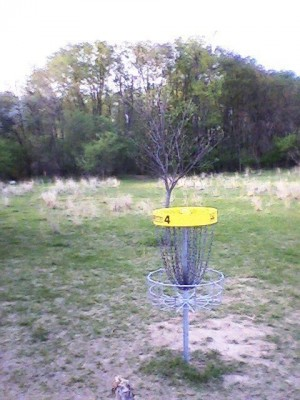 Air Zoo, Main course, Hole 4 Reverse (back up the fairway)