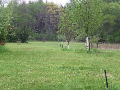 Burchfield Park, Devil's Den, Hole 3 Short tee pad